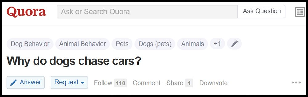 12 automotive queries on Quora that will change the way you